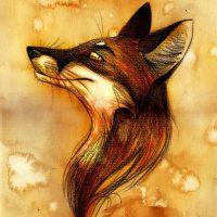 Logo de Franck « Fox »